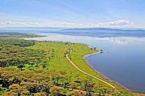 Lake Nakuru Safari: excursion d'une...