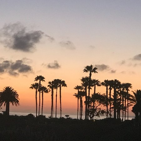 The best at Laguna Beach