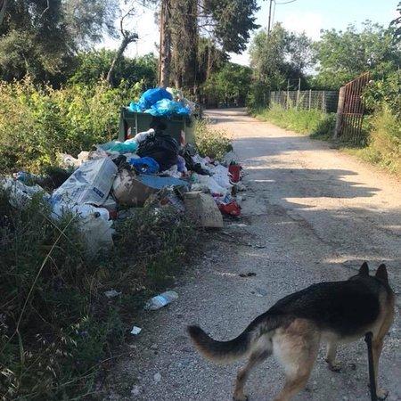 Κέρκυρα (Χώρα), Ελλάδα: Corfu the clearest island