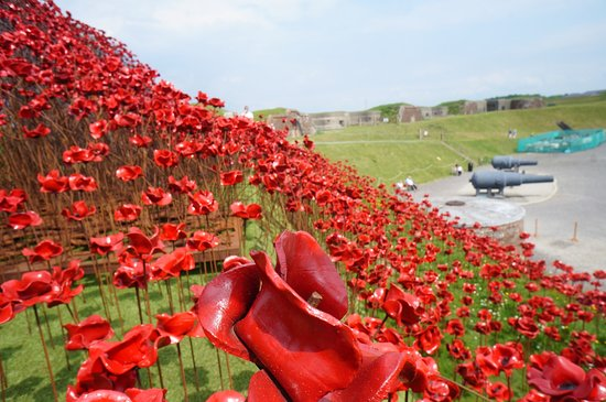 Royal Armouries - Fort Nelson: Poppy Wave @ Fort Nelson, See it before it's gone!