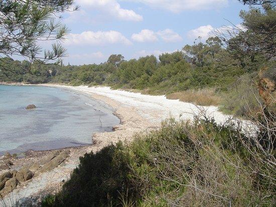 Bormes-Les-Mimosas, فرنسا: Après 25 minutes de marche depuis la plage de cabasson