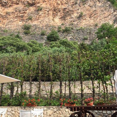 Nago-Torbole, Itália: Caffè di cortesia prima di andare via ❤️