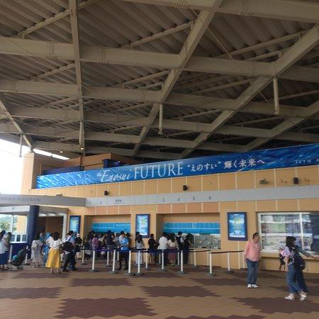 Enoshima Aquarium Φωτογραφία