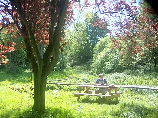 Easton on the Hill, UK: Beautiful picnic spot in the village