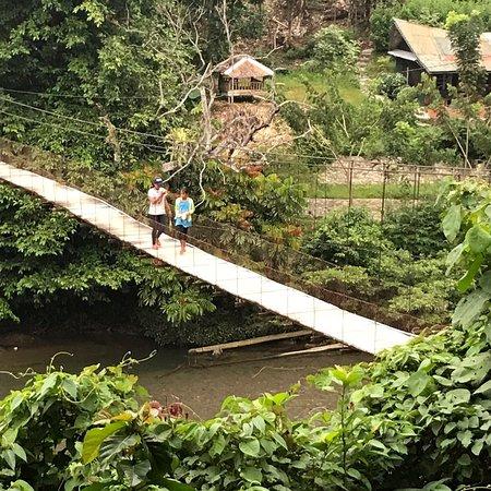 Jungle Lodge Φωτογραφία