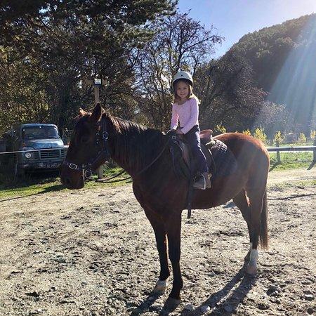 High Country Horses ภาพถ่าย