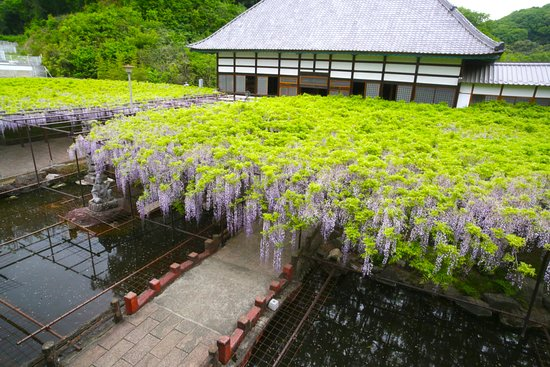 Tyosenji Temple