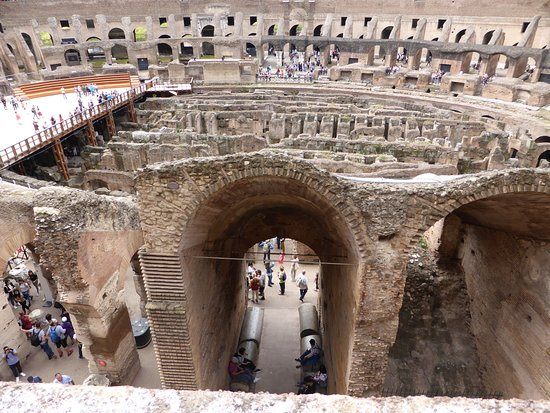 Early Bird Vatican Museums-semi private tour: Inside the Colosseum