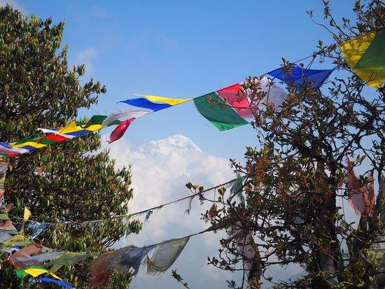 Black Diamond Expedition - Private Day Tours: Annapurna