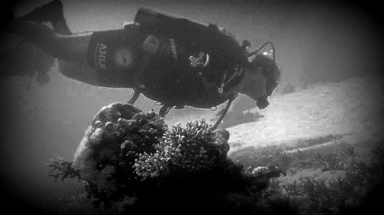 Ahla Diving Center: this is me in action