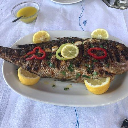 Zagora, Grecja: photo0.jpg