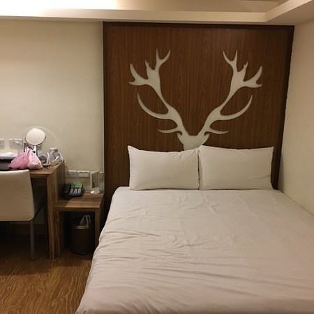 奇异果快捷旅店成功店照片