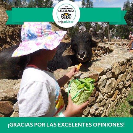 Tibasosa, Colombia: Certificado de excelencia