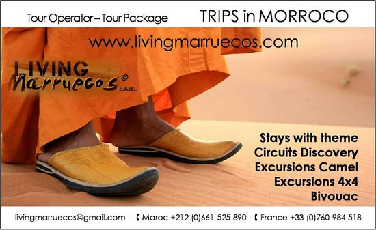 Living Marruecos Privat Day Tours