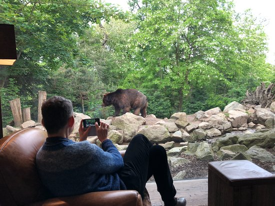 Safari Lodge Photo