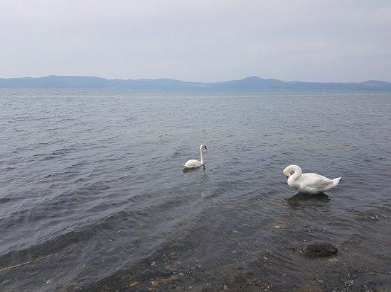 La Caletta sul lago Photo