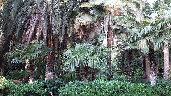 Parque de Maria Luisa: parco
