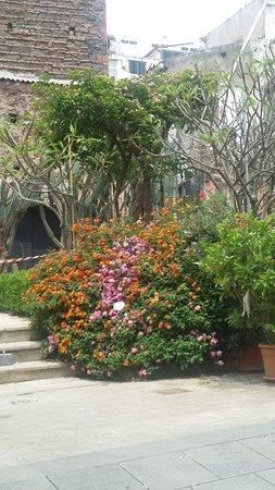 Orto Botanico dell'Università di Catania照片