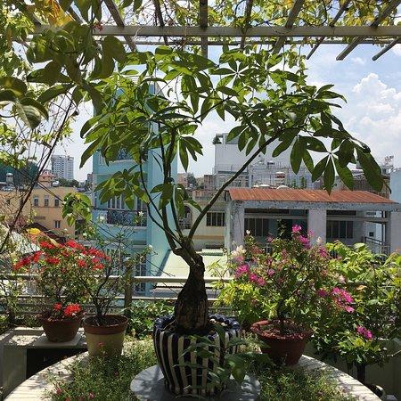 Chez Mimosa Boutique Hotel Resmi