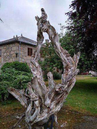 Alfoz, Espanha: En toda la finca hay troncos y raíces colocados con acierto
