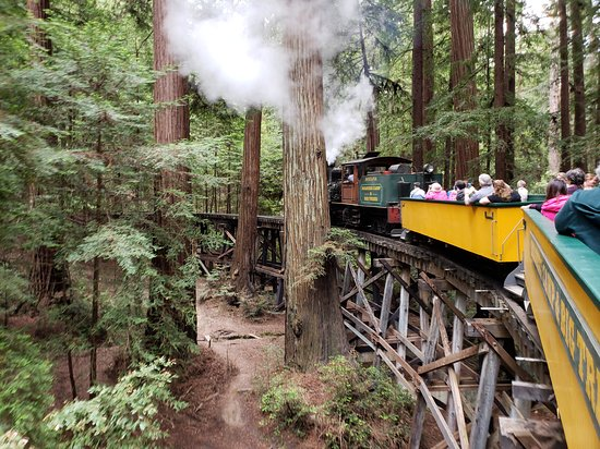 ‪Roaring Camp Railroads‬
