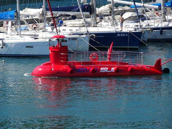 Porto Venere, Italië: Nemo sub