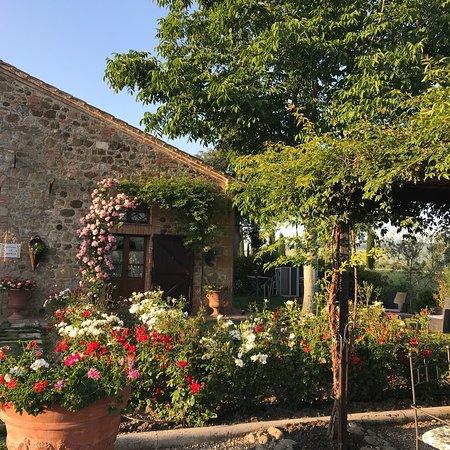 Agriturismi Il Castello La Grancia: photo3.jpg