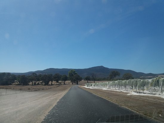 Mount Langi Ghiran: Mount Langi Girham - road and Vineyard