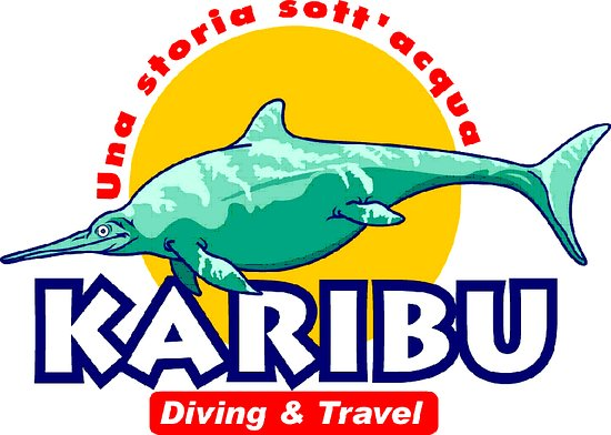 ‪Karibu Diving & Travel‬