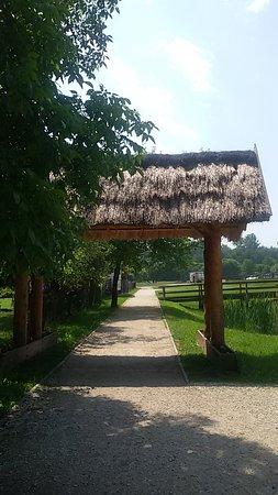 Zamek w Inowłodzu: Droga do zamku