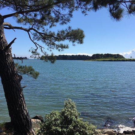 La Pointe du Blair: photo4.jpg