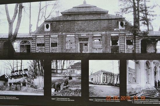 Monplaisir Historical Palace Museum: Война-убийца