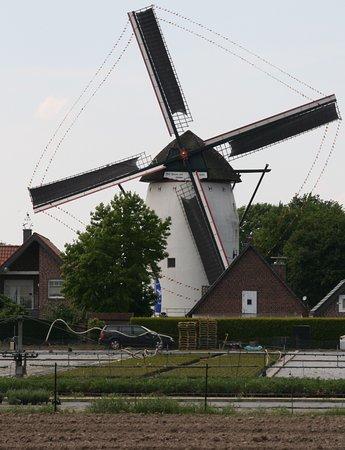 Geldern, Niemcy: Steprather Mühle aus der Ferne
