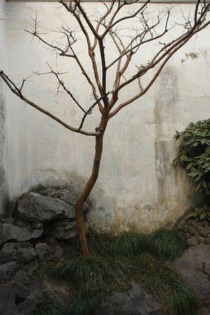 China Highlights Suzhou照片