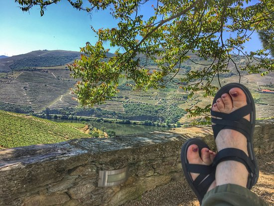 Covas do Douro, Portugal: Relaxing just outside my room