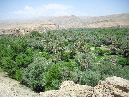 Sahara Dream Tours: valle dello Ziz
