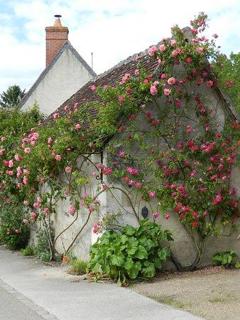 Chedigny, Γαλλία: Chédigny