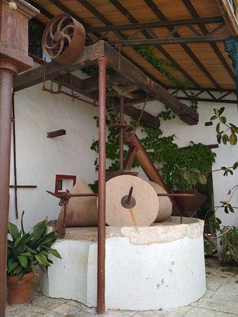 Hacienda Minerva Restaurant: IMG_20180526_163041_large.jpg