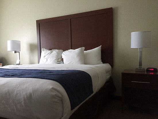 Wilder, KY: Comfort Inn bedroom