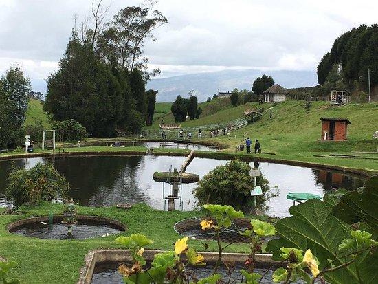 Pillaro, Ecuador: áreas verdes