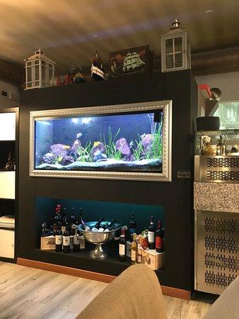 Legnago, Italia: L'enorme acquario