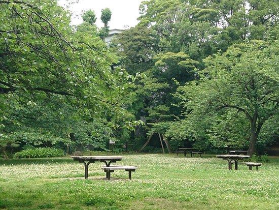 Kiyosumi Teien: 園內一景