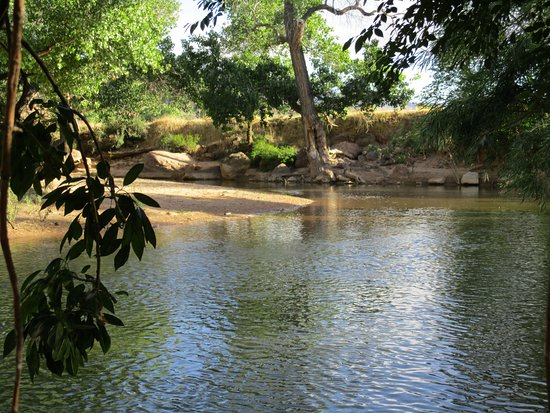 Desert Pearl Inn: Creek by room
