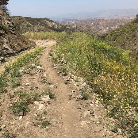 Stough Canyon Nature Center: photo6.jpg