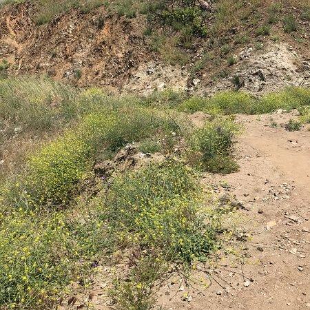 Stough Canyon Nature Center: photo9.jpg