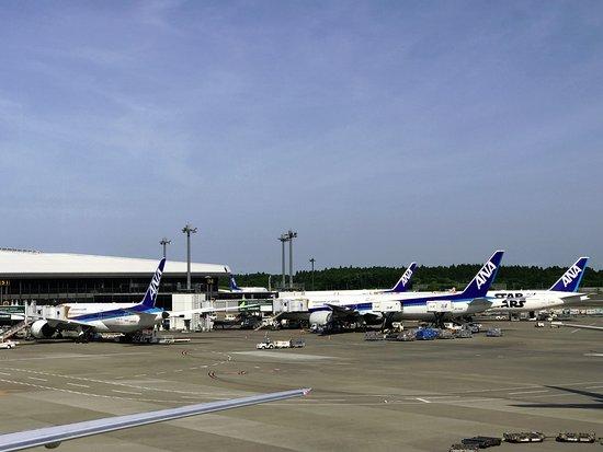 ANA (All Nippon Airways): ANA tarmac at Tokyo Narita.