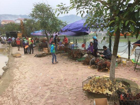 Bac Ha Market: 川の手前の鶏市