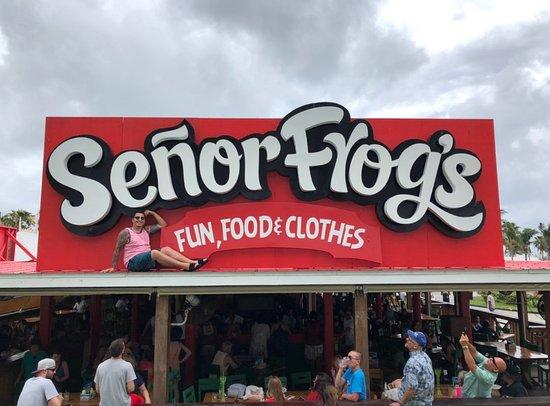 Senor Frog's: IMG_31141_large.jpg