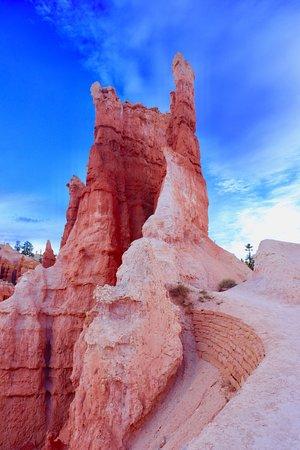 Navajo/Queens Garden Loop: Navajo Loop