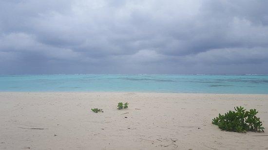 Sun Island Resort and Spa Photo